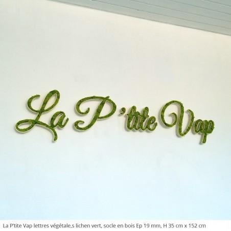 La p'tite vap, enseigne logo végétal socle en bois et lichen vert, décoration pour l'intérieur