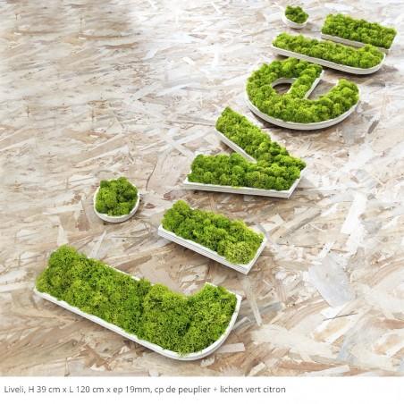 Liveli, logo cp de peuplier + lichen vert citron