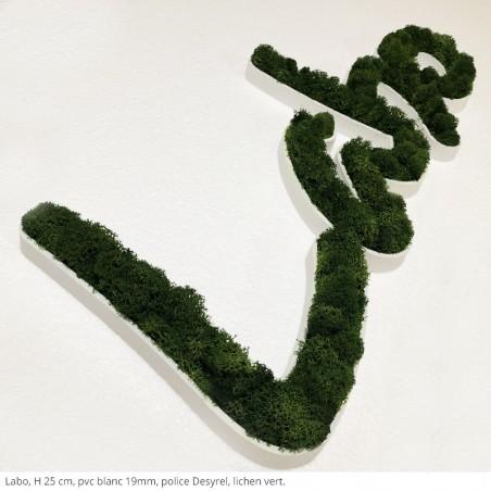 lettres végétales labo pvc blanc brut + lichen vert