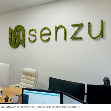 logo SENZU, pvc noir 10mm + lichen vert citron fixation entretoises