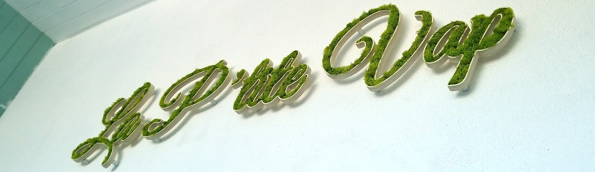 Enseigne Logo végétal, lettres végétales La P'tite Vap dans un socle pvc blanc creusé rempli de lichen vert naturel stabilisé