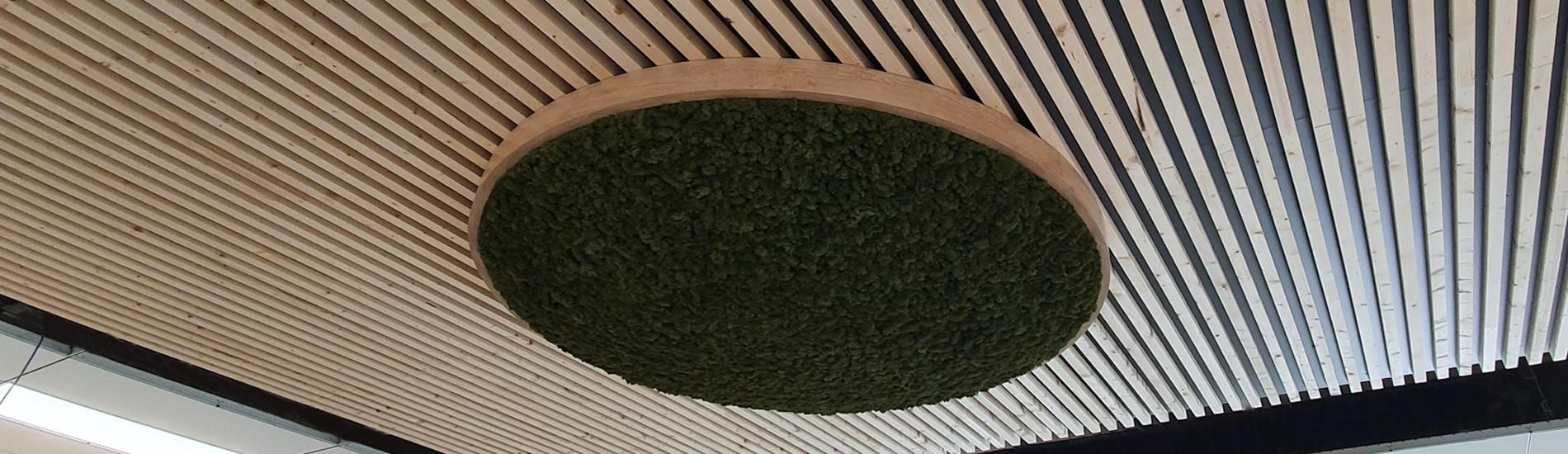 Dôme plafonnier bois et lichen vert 2 m de diamètre
